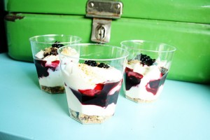 Recipe - Dutch hangop with blackberries and cantuccini biscuits @ By Wilma