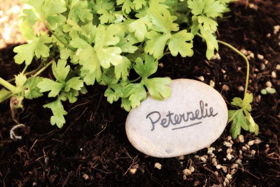 DIY - Garden marking stones