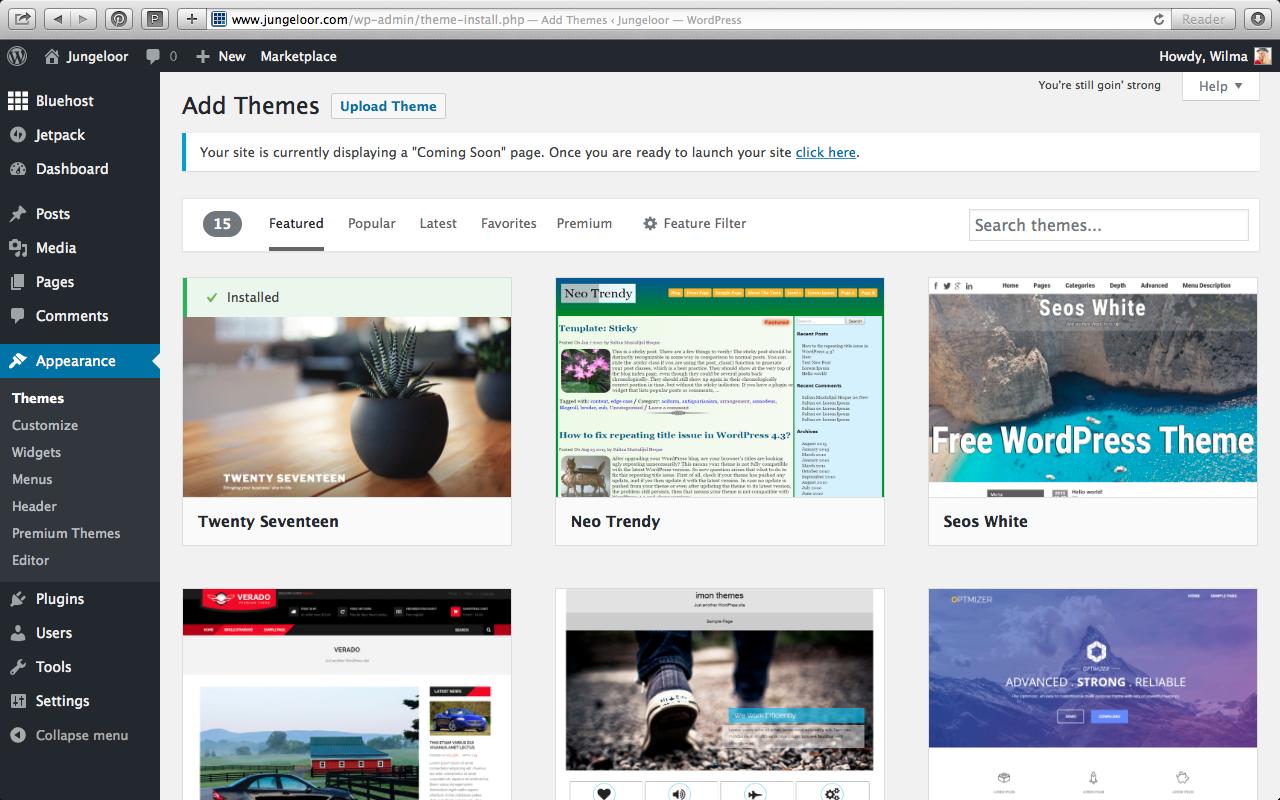 Best WordPress.org themes