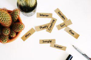 brainstorming blog names